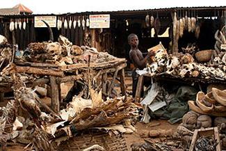 Fetish market in Lome, Togo, 2008