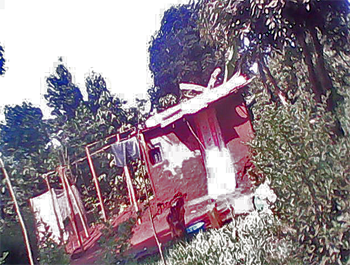 Damage to imam's red pepper plantation and store