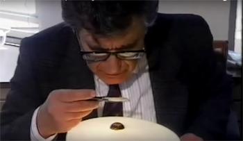 Professor Moshe Sharon examines stone