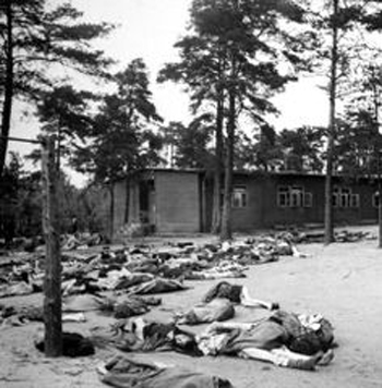 Bodies of dead and dying amid the trees at Bergen-Belsen