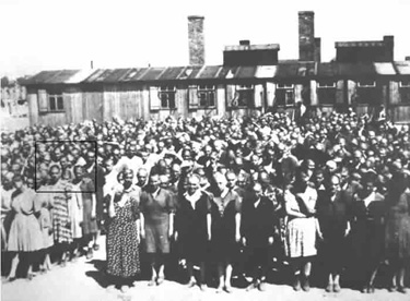Magda (in square) shortly after arrival at Auschwitz